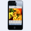 milcahのスマートフォン用サイトをデザイン