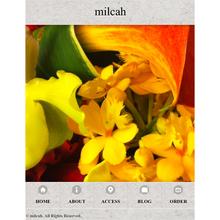 milcah Smart Phone